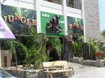 Jungle Mania Restaurant(Cyprus Equivalent Of Rain Forest Cafe).