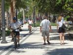 Shared walking and bike path along beachfront