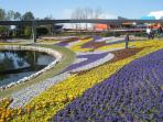 Fabulous landscaping  Disney Epcot Centre
