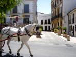 Charming Town of Ronda, Andalucia