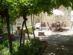view across terrace - note he grapes hanging from the vine, which provide shade and cover in summer