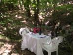 The table is set by the waterfall