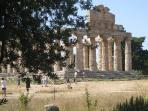 The ruins of one of the temples in Paestum