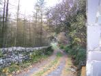 Single Track Entrance to Cottage