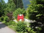Chalet Driveway
