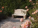 A quiet corner of the rose garden