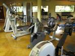 Club arbol gym