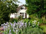 Quiet tranquil garden