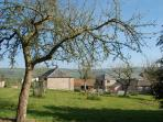 View of Farm Buildings from the orchard