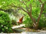Relax in the Garden!