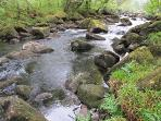 A Dartmoor river
