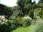 Our well maintained garden.