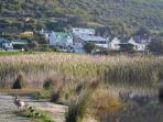 Looking at GlenLin with white balcony from the wetlands