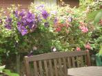 A quiet spot in the back gardens for a coffee  August 2012