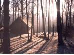 Burnbank Lodges sits in 5 acres of natural woodland