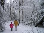Grovelands Park in Winter