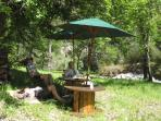 Pic-nic down by the river at the bottom of the garden - 20 acres of white oak