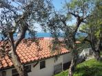 Outside villa with garden furniture, pool, pizza oven, outside shower, bbq area in sorrento coast