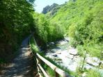 Bike and Walking Path