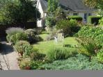 Ivybank Front Garden