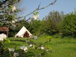 Expand the sleeping capacity with hiring one of our lovely bell tents in the orchard