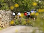 BYCICLE TOURING ROUTES