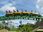 Family Fun at Busch Gardens