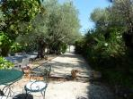Boules area in garden.