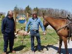 Neighbors come to visit on horseback