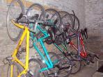 Loads of well-maintained bikes to borrow