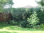 Apple tree and bushes complete the picture in this private, pretty and well maintained garden