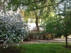 North garden