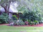 Exterior (Front) - Beautiful, private, wooded retreat only 200 yards from beach