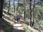 senderismo, escalada, parapente, bicicleta de montaña...