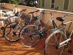 Bici / Bikes