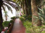 Garden of the house for  apt Solaria 2 & 1