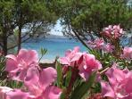 19 acres of beachfront property for your holiday relaxation
