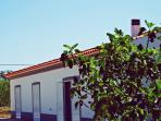 Solar da Cotovia - Albufeira #1