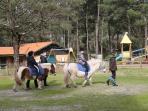 Ballades poney au centre équestre de Lacanau