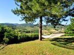 L'amaca sulla quale uno può riposarsi e godere di una splendida vista panoramica