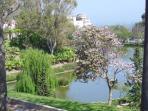 Parque de paloma