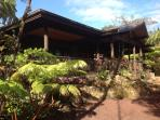 Volcano Rainforest Lodge