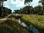 La bufalina - la pista ciclabile lungo l'omonimo canale che porta alla spiaggia
