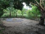 Firepit and patio in back yard sheltered by mango tree