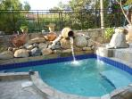 The rockery and bespoke plunge pool with seating and drinks area