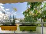 The balcony with jardinières of aromatic herbs thymari, Oregon,Sage, Basil, rosemary and lavender