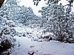 Come Enjoy A Winter Wonderland Situated High Above The Desert At The Eagles Nest Hillside Retreat.