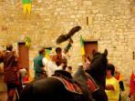 Falconers show in the castle - Spettacolo di falconieri nel Castello