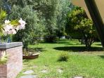Vista dal dondolo: Giardino. A sinistra il pozzo avente motorino per irrigazione giardino ed acqua.