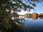Les arbres dorés qui miroitent dans le lac Noir par une belle journée d'automne